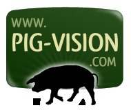 Pig-Vision Documentary