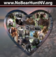 No Bear Hunt NV