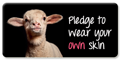 Pledge wool button